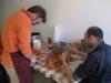 festa-montecchio-2012-002