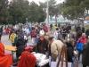 carnevale-avesa-2012-13